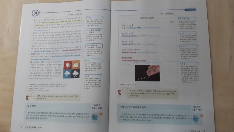 SE-13ef6d14-d6b1-4eea-aa61-352322608d70.jpg
