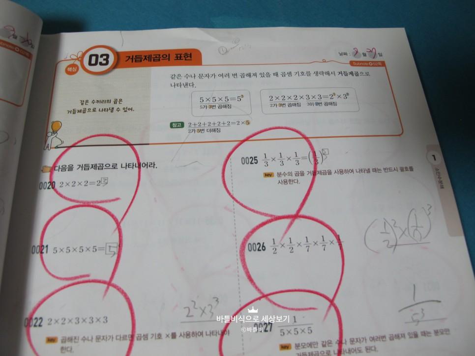 SE-b26bf8fd-f9d4-4202-a5ca-b2dc49382564.jpg